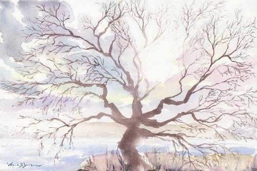 Winter tree in the sun_december 2017